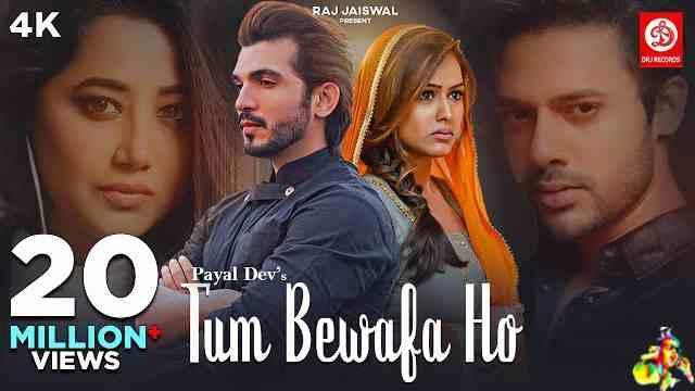 Tum Bewafa Ho Lyrics - Payal Dev & Stebin Ben